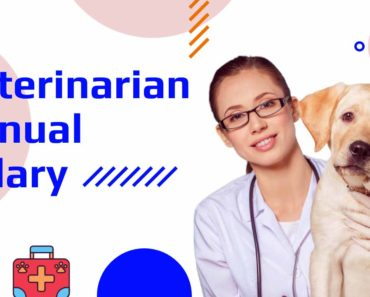 Veterinarian Annual Salary See how much Veterinary Assistant and Technician Earns.